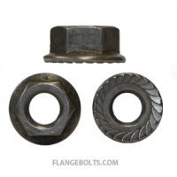 1/4-20 Hex Serrated Flange Nut Grade 8 Plain